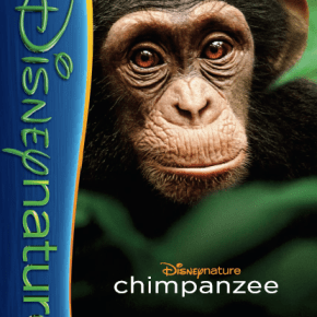 Disneynature's Chimpanzee activity pages