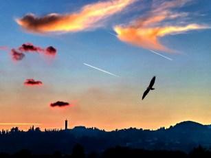 PieroRasia2013_trissino_tramonto
