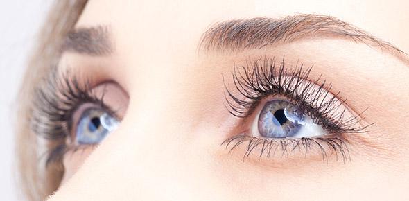 Eye Diagram Quiz - ProProfs Quiz