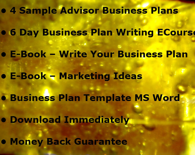 My Gift to YOU - Financial Advisor Marketing Plan Template - The - writing business marketing plan