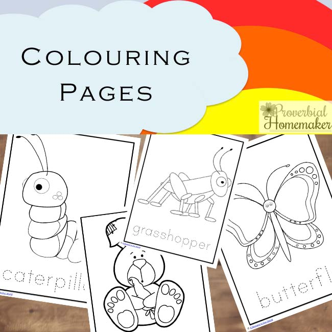 Spring Printable Pack (70 Pages of Learning Fun) - Proverbial Homemaker