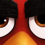angry-birds-arg
