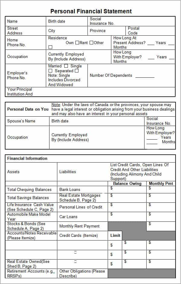 Personal Financial Statement Software And Financial Report Template