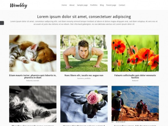 Wembly WordPress Portfolio Theme
