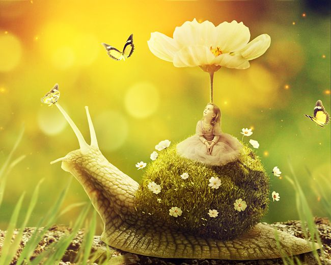 Create a Surreal Snail with a Grassy Shell in Photoshop