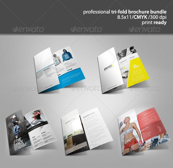 3 fold pamphlet