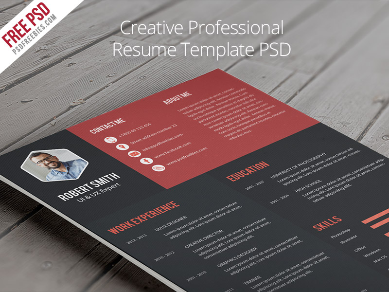 free creative professional resume template - Free Usable Resume Templates
