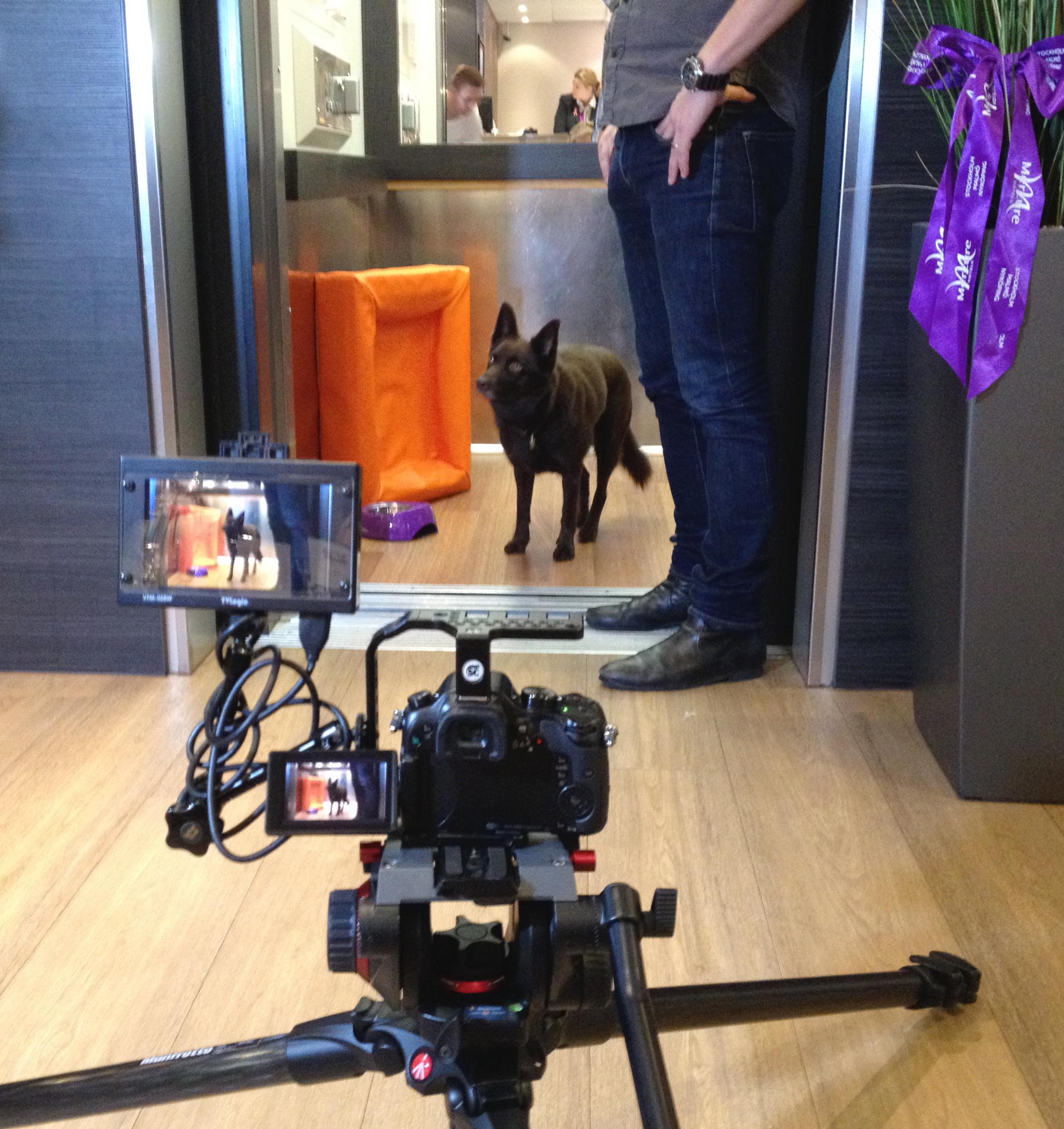 Filminspelning på Mercure Hotel Stockholm South