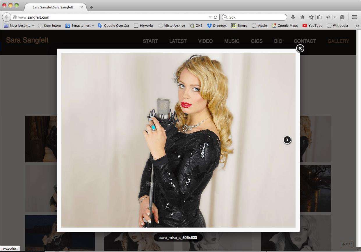 Fotogalleri i Wordpress till Sara Sangfelts hemsida