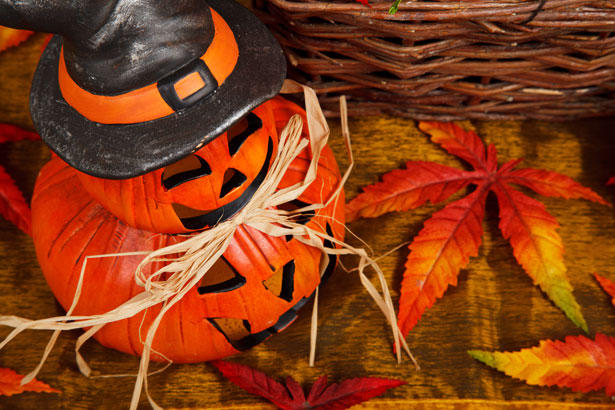 Fall Season Wallpapers Hd Halloween Pumpkin Free Stock Photo Public Domain Pictures