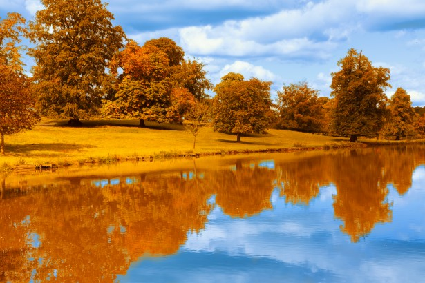 Orange Fall Wallpaper Autumn By The Lake Free Stock Photo Public Domain Pictures