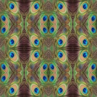 Peacock Feathers Abstract Wallpaper Free Stock Photo ...