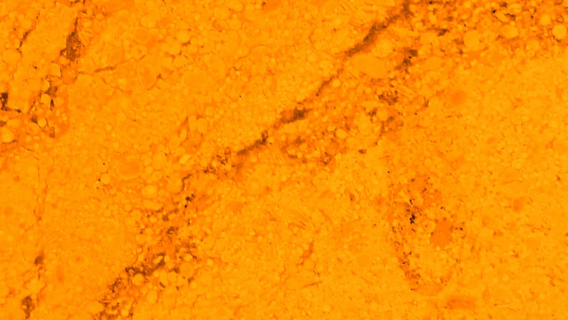 Black Wood Wallpaper M 225 Rmol Naranja Textura De Fondo Stock De Foto Gratis