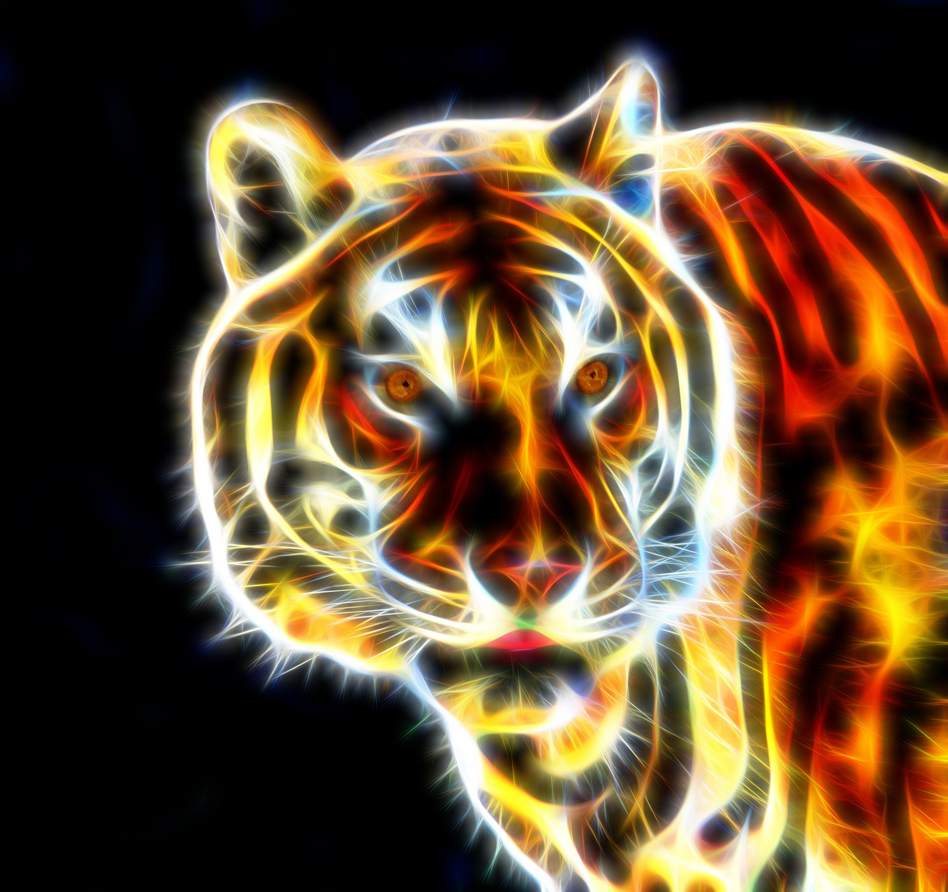 3d Colour Wallpaper Free Download Tiger Fractal Wire Flame Free Stock Photo Public Domain
