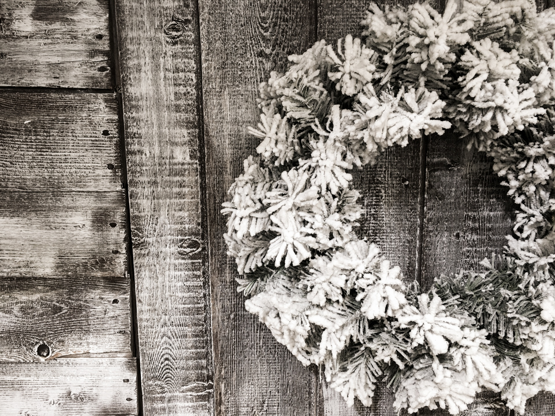 Snow Wallpaper Iphone Christmas Wreath Free Stock Photo Public Domain Pictures