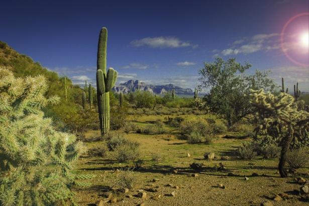 24 Wallpaper Hd Arizona Landscape Free Stock Photo Public Domain Pictures