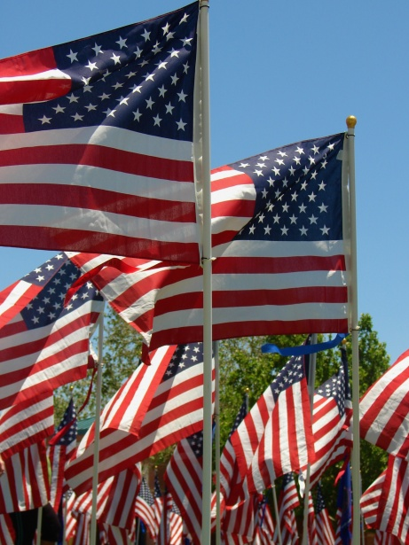 American Flags On Memorial Day Free Stock Photo - Public Domain Pictures