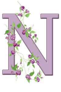 Letter N Floral Initial Free Stock Photo