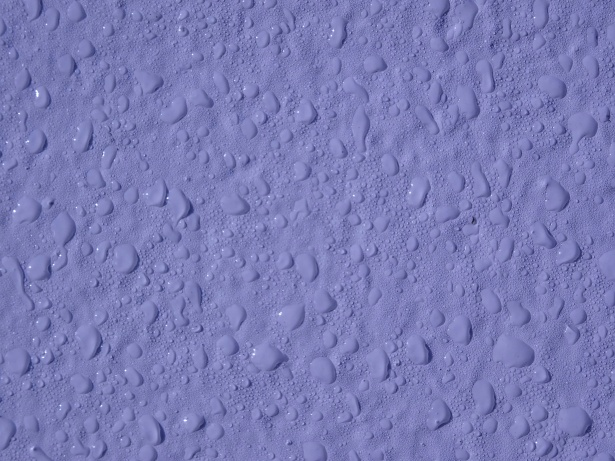 Lilac Water Droplets Background Free Stock Photo - Public Domain - water droplets background