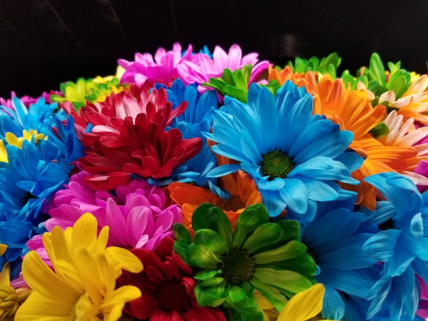 The Amazing Wallpaper Hd Colorful Flowers Free Stock Photo Public Domain Pictures