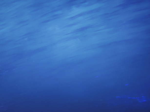 Ocean Background Blue Free Stock Photo - Public Domain Pictures