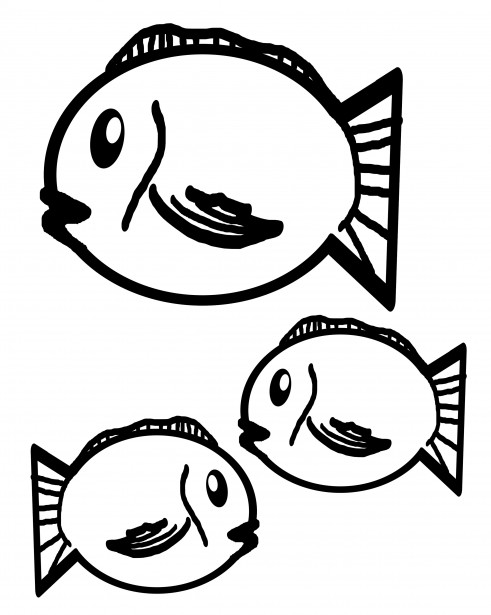 fish outlines free stock photo
