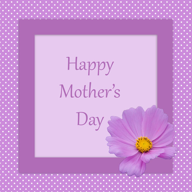 Mother\u0027s Day Card Flower Free Stock Photo - Public Domain Pictures - mother sday cards