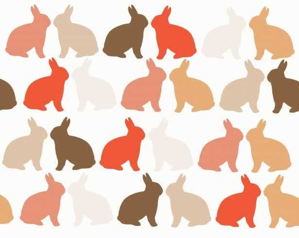 Bunny Wallpaper Cute Skin Tone Rabbits Background Free Stock Photo Public