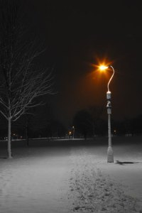 Street Lamps At Night In Winter Free Stock Photo - Public ...