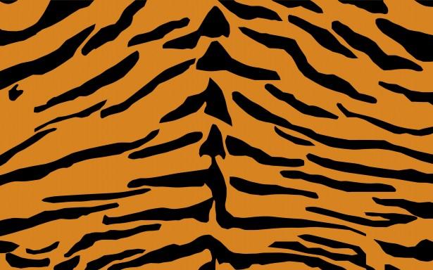 Lion Animal Wallpaper Motif Tigre Imprimer La Peau Photo Stock Libre Public