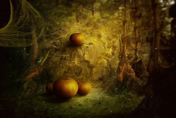 3d Mushroom Garden Wallpaper Download Happy Halloween Free Stock Photo Public Domain Pictures