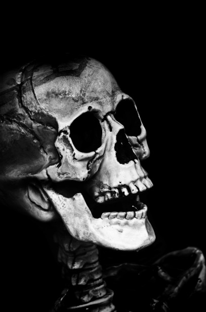 England Wallpaper Hd Skull Free Stock Photo Public Domain Pictures