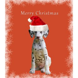 Small Crop Of Dog Christmas Cards