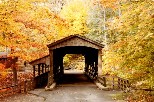 Fall Leaves Wallpaper Covered Bridge In Forest 1 Free Stock Photo Public