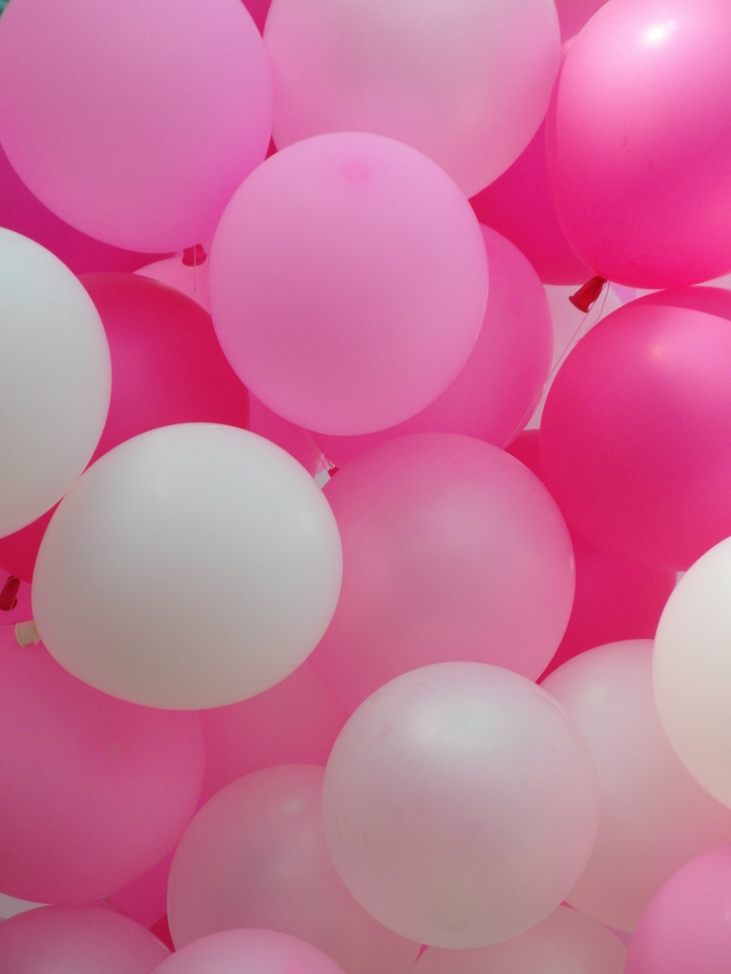 Wallpaper Girl Pink Iphone Pink Balloons Free Stock Photo Public Domain Pictures