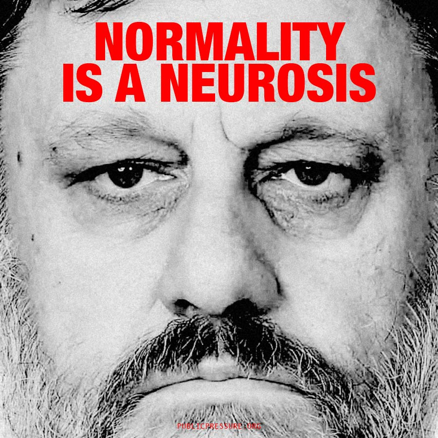 zizek-normality-low