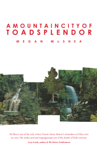 A Mountain City of Toad Splendor