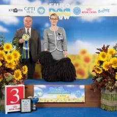 2017-08-25KIEV_EDS_BOLLI_BIG3
