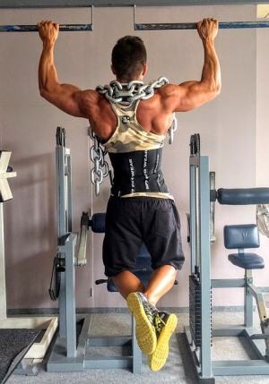 Pull-Up Muscles - Which Muscles are used for Pull-Ups?