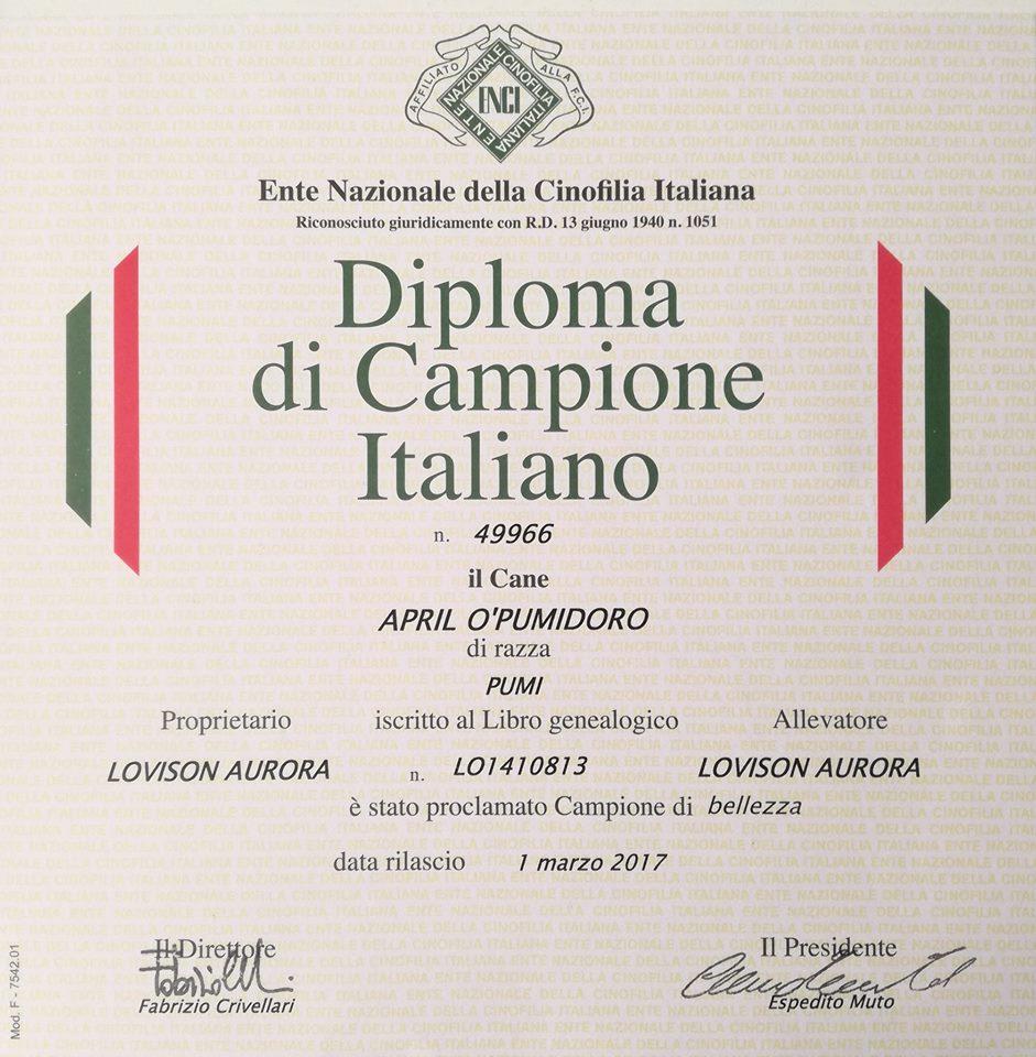 diploma_campione_italiano