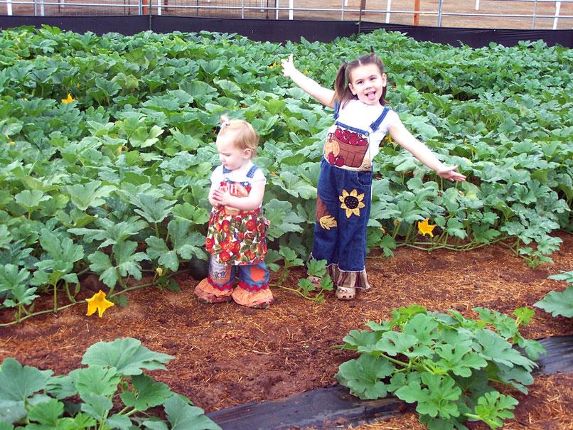 Farm-PumpkinPatchKids