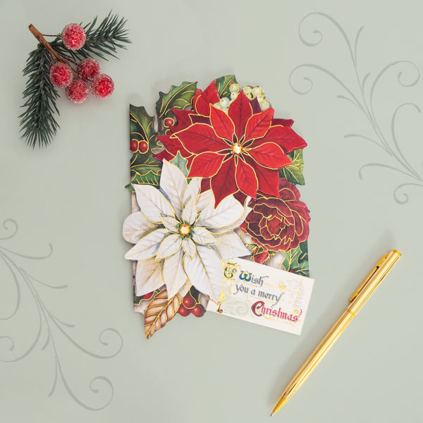 Christmas Poinsettia Boxed Holiday Cards Punch Studio