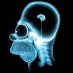 El ser humano: ¿Una especie evolucionada? ¿De verdad?
