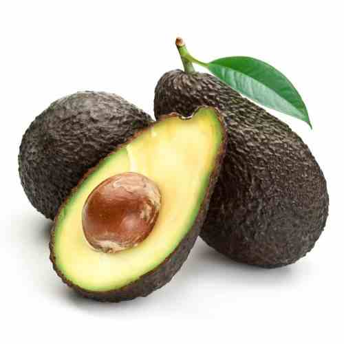 Medium Crop Of Is Avocado Good For Dogs