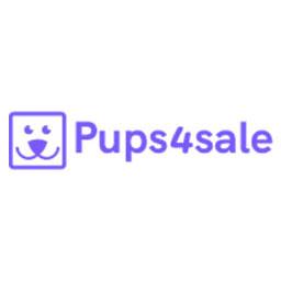 Image For Available Dogs Dogue De Bordeaux Rescue Australia