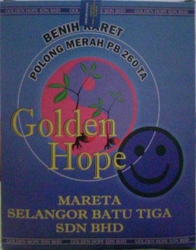 Bibit Karet BENIH GETAH MALAYSIA GOLDEN HOPE GT X PB TA Untuk