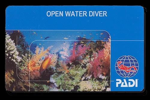 PADI Open Water Certification Card - Pura Vida Divers : Discover ...