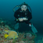 Diver with Angelfish