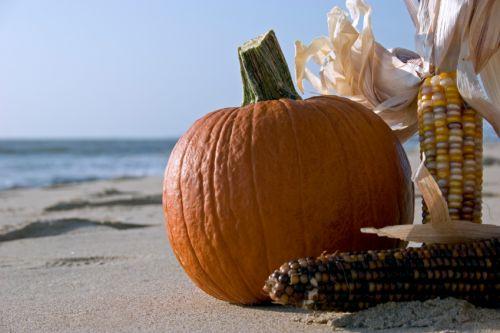 Pumpkin_on_beach