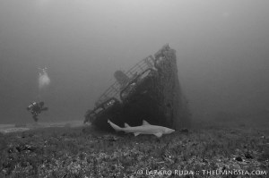 Wreck Diving Palm Beach
